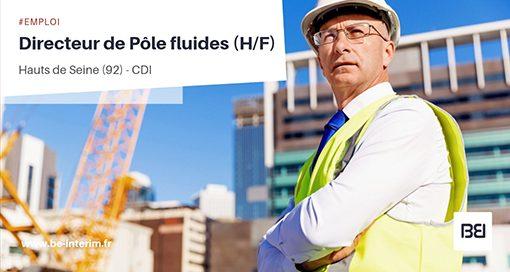 DIRECTEUR DE PÔLE FLUIDES