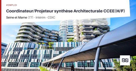 COORDINATEUR/PROJETEUR 2D/3D SYNTHÈSE ARCHITECTURALE CCEE