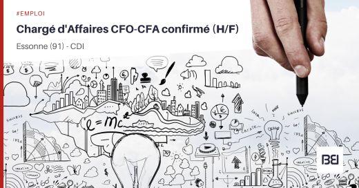 CHARGÉ D'AFFAIRES CFO-CFA CONFIRMÉ