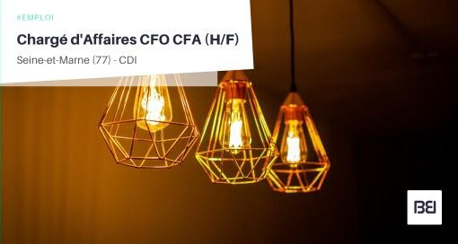 CHARGÉ D'AFFAIRES CFO CFA
