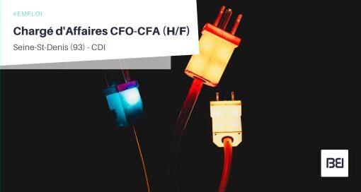 CHARGÉ D'AFFAIRES CFO-CFA