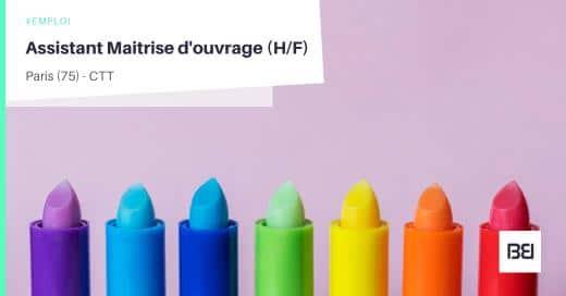 ASSISTANT MAITRISE D'OUVRAGE
